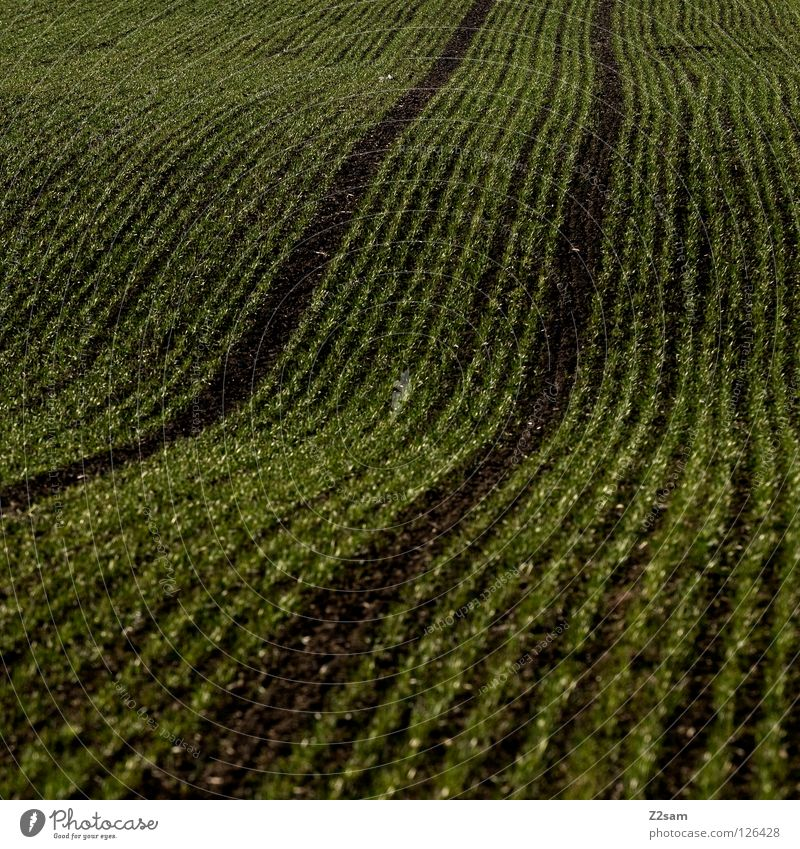 agricultural art Agriculture Field Meadow 2 Waves Graphic Black Dark Square Skid marks Parallel Earth Sand arrogant Tracks Lanes & trails Arch Line Reduce
