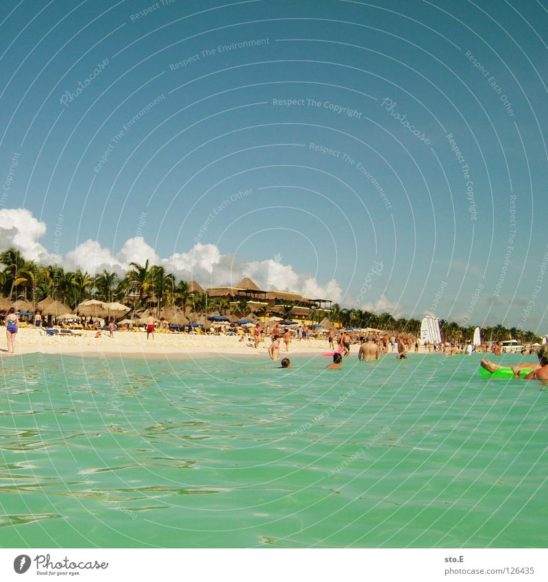 drive ashore Vacation & Travel Vacation photo Traveling Tourist Relaxation Ocean Pacific Ocean Atlantic Ocean Swimming & Bathing Snorkeling Diving equipment