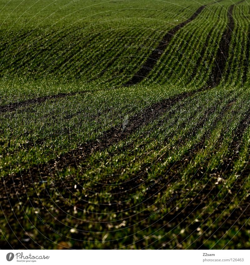 Agricultural art. Agriculture Field Meadow 2 Waves Graphic Black Dark Square Skid marks Parallel arrogant Tracks Lanes & trails Arch Line Reduce Simple Contrast
