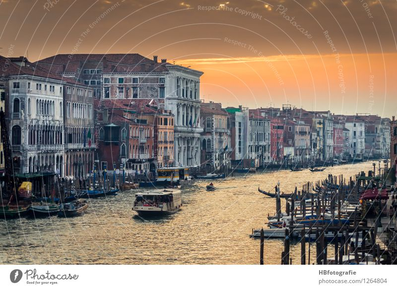 Grand Canal Venice Italy Town Downtown Old town House (Residential Structure) Tourist Attraction Landmark Emotions Moody Warm-heartedness Canal Grande Water