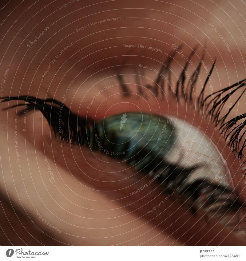 Woman Blue Green Beautiful Black Eyes Feminine Make-up Eyelash Cosmetics Iris Macro (Extreme close-up) Wearing makeup