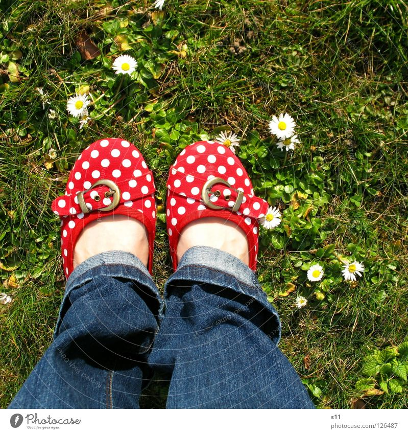 In Her Shoes Skin Woman Adults Feet Nature Plant Spring Flower Grass Blossom Meadow Clothing Pants Jeans Footwear Blue Green Red White Obedient Point Spotted