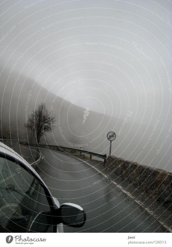 Tree Clouds Mountain Car Rain Fog Dangerous Driving Eerie Ambiguous Overtake