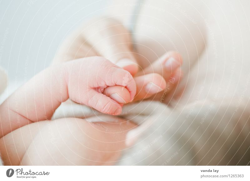 Human being Hand Adults Life Family & Relations Together Infancy Future Baby Fingers Warm-heartedness Protection Safety Mother Trust Considerate