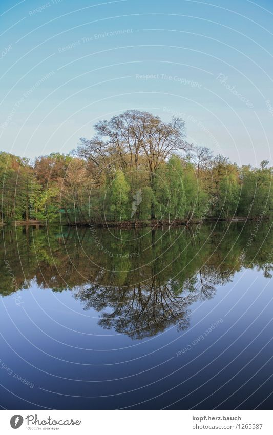 two sides of the same coin Nature Water Horizon Beautiful weather Tree Lake Fishpond Lakeside Paderborn district Belief Grief Esthetic Contentment Discover