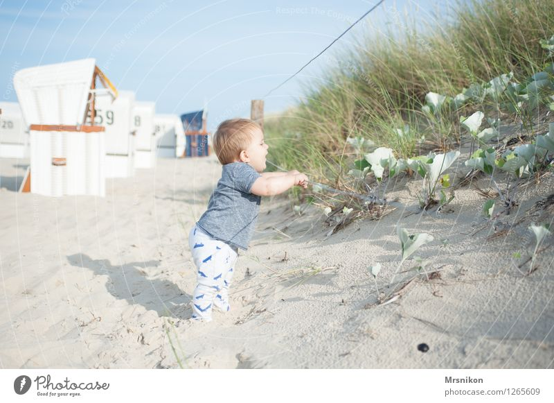 dune Baby Toddler Boy (child) Family & Relations Infancy Life 1 Human being 0 - 12 months Sand Cloudless sky Summer Beautiful weather Coast Beach Baltic Sea