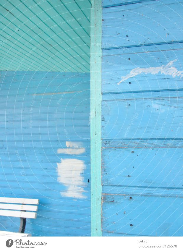 White Line Bench Turquoise Redecorate Section of image Partially visible Redevelop Patch of colour Wooden wall Sky blue Light blue Paints and varnish Paintwork