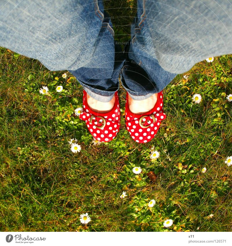 In Her Shoes II Skin Summer Woman Adults Feet Nature Plant Spring Flower Grass Blossom Meadow Clothing Pants Jeans Footwear Blue Green Red White Obedient Point
