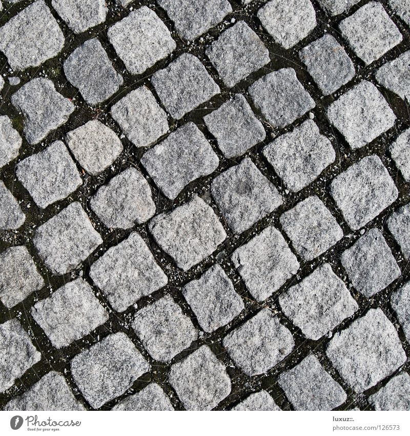 Stone by stone Cobblestones Parking lot Diagonal Structures and shapes Square Gray Granite Hard Natural stone Pedestrian precinct No smoking Mosaic Sheepish