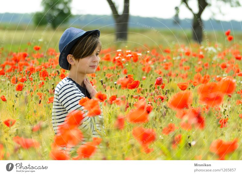 Human being Child Nature Youth (Young adults) Plant Beautiful Landscape Girl Meadow Feminine Going Field Infancy Walking Blossoming Beautiful weather