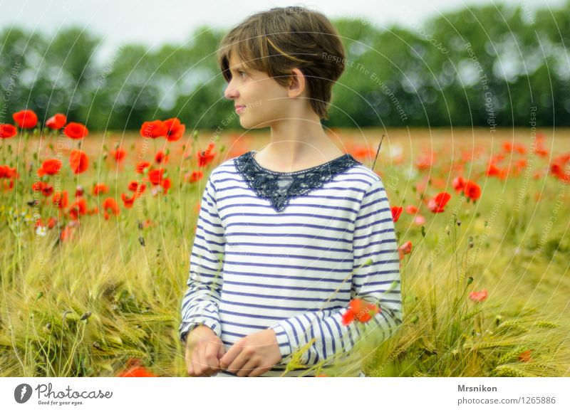 poppy field Girl Infancy Youth (Young adults) Life 1 Human being 8 - 13 years Child Summer Field Blossoming Looking Stand Fantastic Free Happy Infinity Poppy