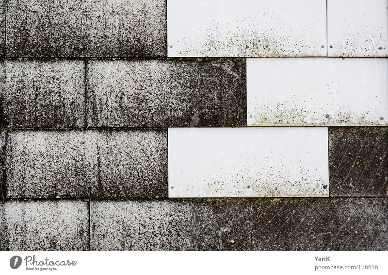 tetris Roofing tile Wall (building) Cover up Covers (Construction) Derelict Weather Dark Rectangle White Black Building Wall (barrier) Detail Stone Old