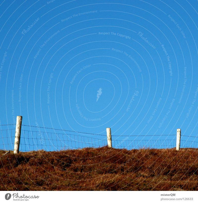 Sky Blue Summer Meadow Above Grass Mountain Wood Wall (barrier) Building Brown Instant messaging Hiking Horizon Tall Trip