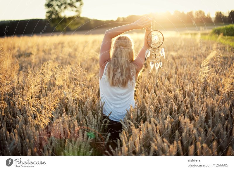 Human being Woman Nature Youth (Young adults) Summer Young woman Landscape 18 - 30 years Adults Environment Warmth Feminine Moody Dream Field Illuminate