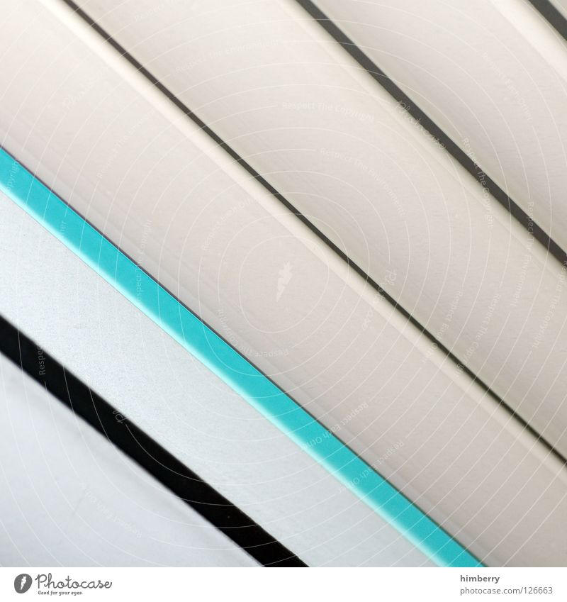 disguise issue Furrow Dazzle Pattern Turquoise Green White Background picture Design Interior design Fashioned Product Venetian blinds Roller blind Drape