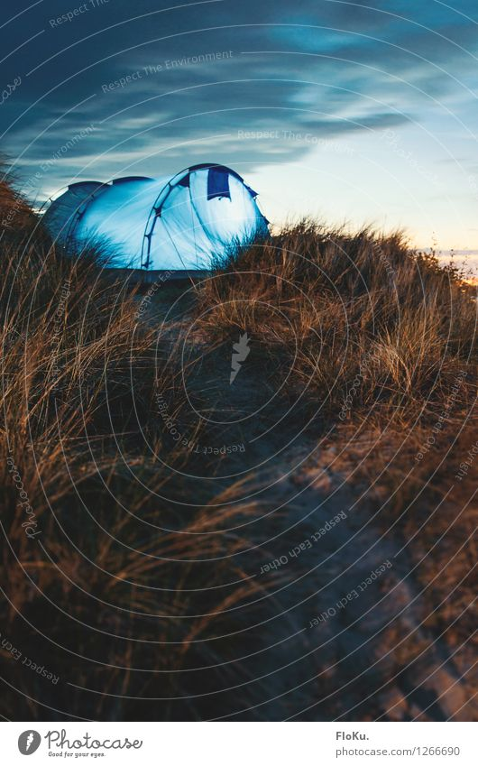 Camping in the dunes of Sylt Vacation & Travel Tourism Trip Adventure Freedom Summer Summer vacation Environment Nature Landscape Earth Sand Sky Clouds Sunrise