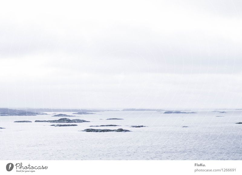 Welcome to Sweden Trip Far-off places Cruise Environment Nature Landscape Elements Earth Water Sky Clouds Horizon Bad weather Fog Waves Coast Bay Fjord