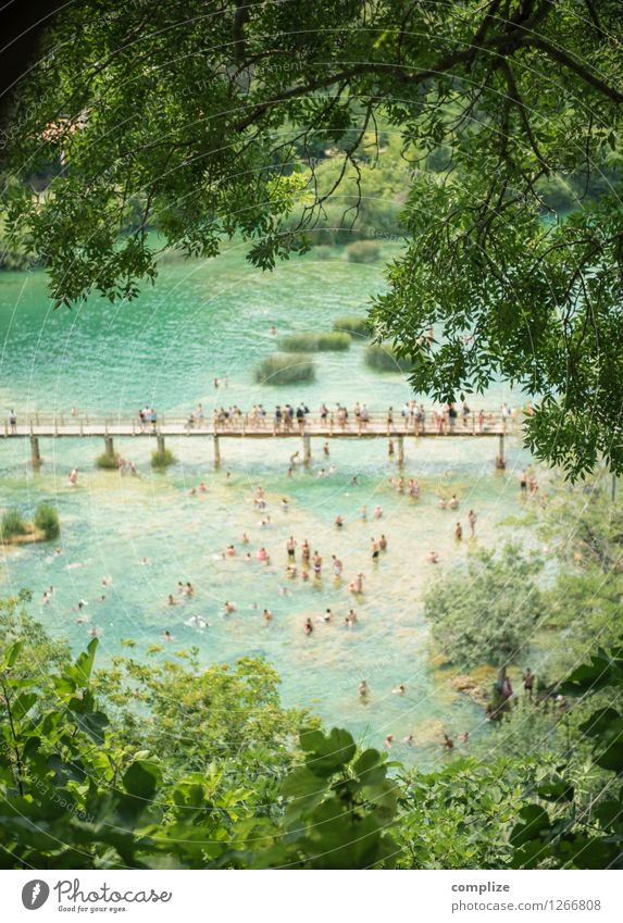 krka Vacation & Travel Tourism Trip Sightseeing Summer Summer vacation Sunbathing Beach Ocean Human being Group Crowd of people Environment Nature Plant Bushes