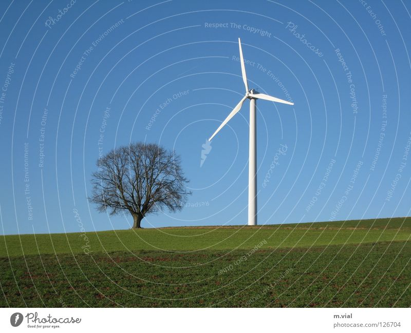 David and Goliath Tree Wind energy plant Sky Meadow Field Nature Landscape Electricity Green White Blue