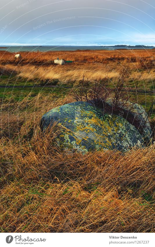 Chopped in half a large stone in the yellow grass and boat Beach Ocean Island Rope Nature Landscape Sky Horizon Wind Grass Rock Coast Lake Watercraft Stone Old