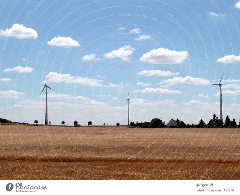 Nature Sky Blue Summer Clouds Field Wind energy plant Grain