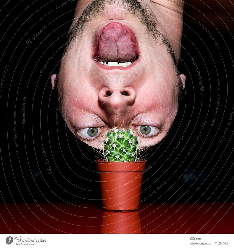 Grow up, will you? Growth Looking Cap Black Facial hair Cactus Man Plant Red Self portrait Table Inverted Funny Crazy Gap Glittering Dark Hand Fingers