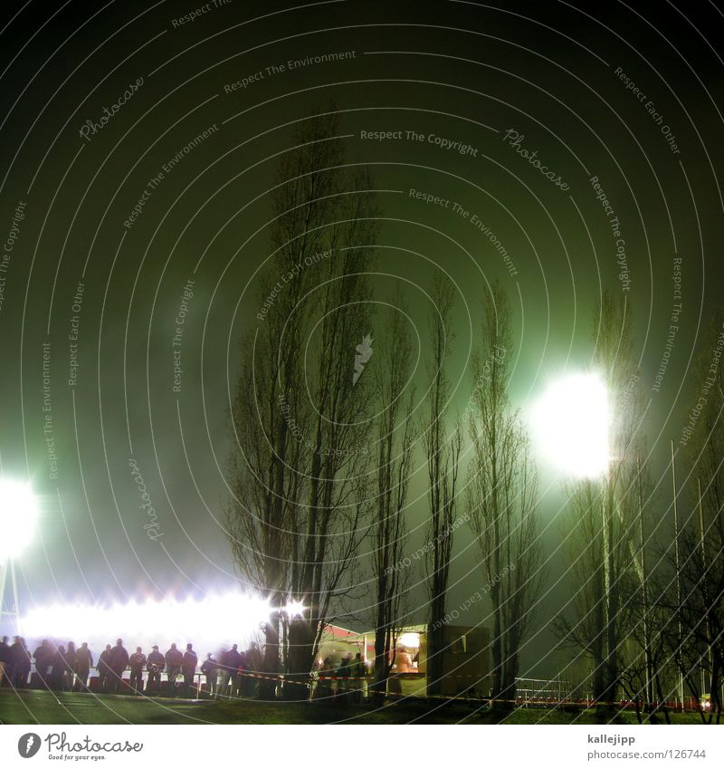 overexposed sports field Stadium Event Floodlight Light Night Tree Poplar Audience World Cup Switzerland Austria Playing Fan Hooligan Entrance Places Lamp