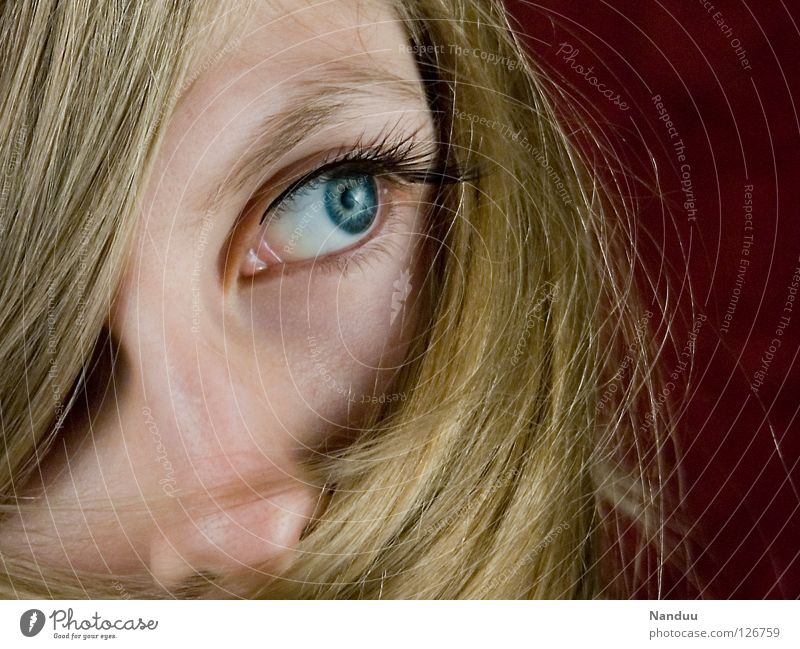 blonde deluxe Woman Feminine Blonde Hair and hairstyles Shampoo Vail Red Concealed Packaged Eyelash Timidity Dreamily Think Impish Studio shot Seventies Retro