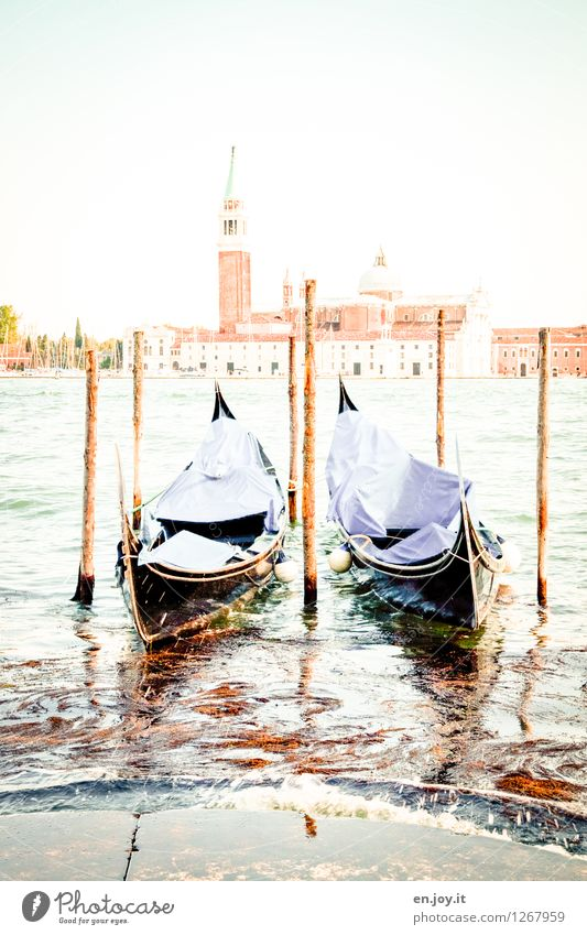 Burnt out Vacation & Travel Tourism Trip Sightseeing City trip Summer Summer vacation Sky Sunlight Beautiful weather Channel Venice Italy Church Tower