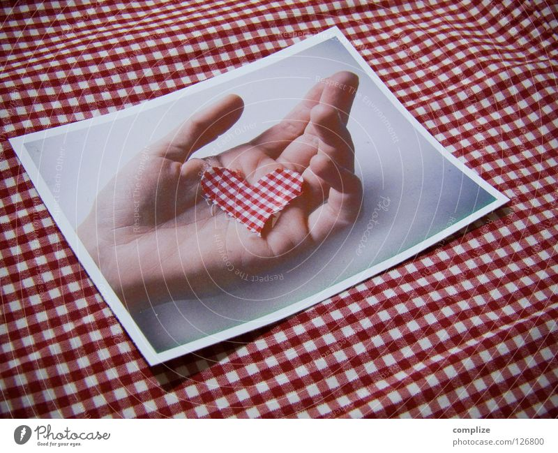 Hand Love Sadness Heart Photography Trip Table Retro Romance Grief Kitchen Protection Delicate Partner Checkered Concern