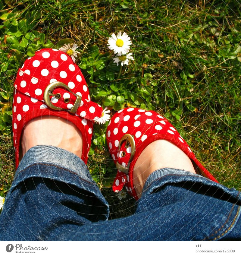 In Her Shoes III Skin Summer Woman Adults Feet Nature Plant Spring Flower Grass Blossom Meadow Clothing Pants Jeans Footwear Blue Green Red White Obedient Point
