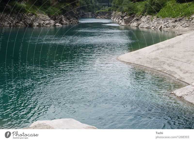 Rhine still small + fine Wellness Life Harmonious Relaxation Calm Leisure and hobbies Vacation & Travel Nature Landscape Water Rock River Lower Rhine Valley
