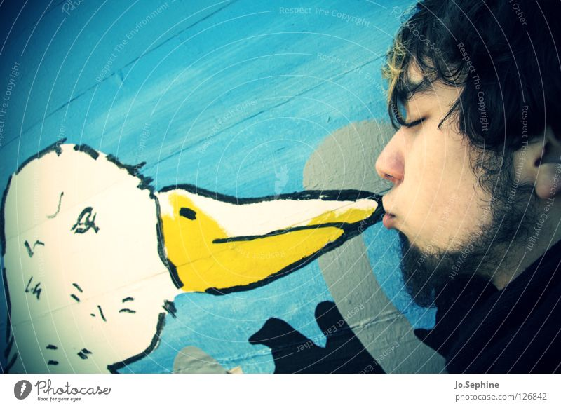 Man Adults Love Wall (building) 18 - 30 years Bird Sweet Cute Touch Facial hair Kissing Beak Street art Goose Affection Absurdity