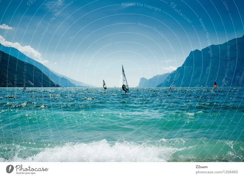 lago di garda Lifestyle Leisure and hobbies Surfing Vacation & Travel Freedom Summer Summer vacation Sports Aquatics Nature Landscape Cloudless sky