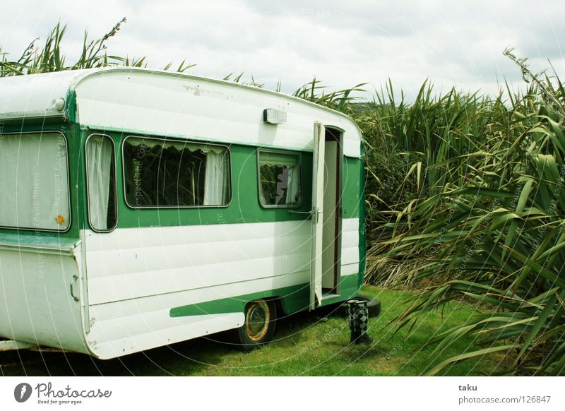 SWEET LITTLE HOME New Zealand Caravan Green White Camping site Rubber boots Ocean Beautiful Beach Living room p.b. campervan Old flax my gumboots small home