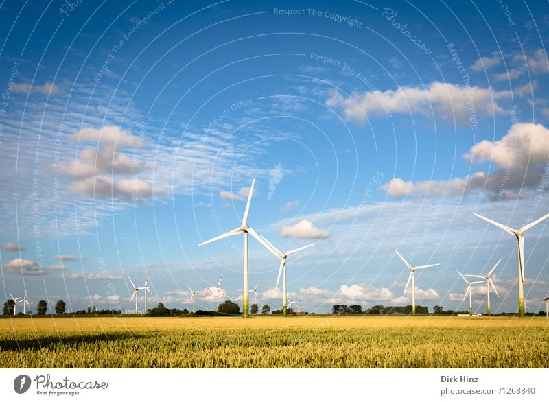 Sky Nature Blue Plant Summer Landscape Clouds Environment Coast Horizon Energy industry Gold Wind Technology Future Industry