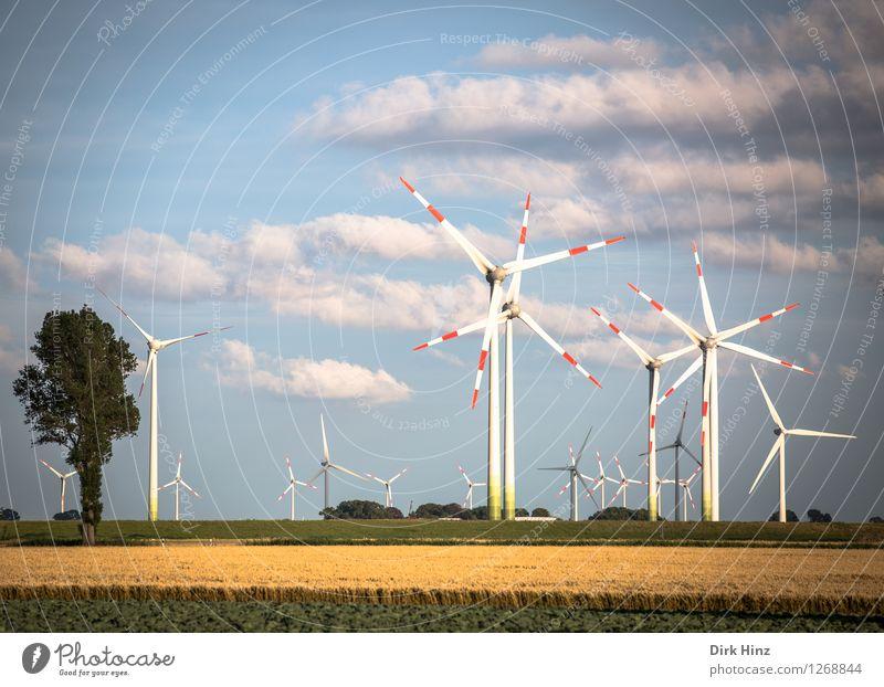 Wind farm in Dithmarschen Technology Advancement Future Energy industry Renewable energy Wind energy plant Energy crisis Industry Environment Nature Landscape