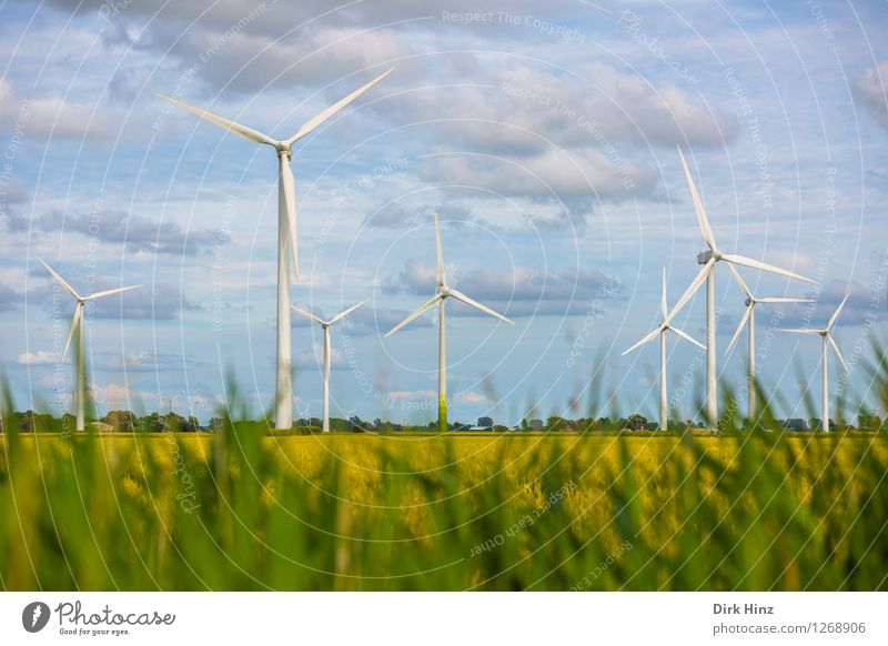 Wind farm in Dithmarschen Technology Science & Research Advancement Future Energy industry Renewable energy Wind energy plant Industry Environment Nature