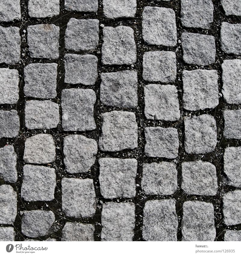 stone by stone Cobblestones Parking lot Vertical Structures and shapes Square Gray Granite Hard Natural stone Pedestrian precinct No smoking Mosaic Sheepish