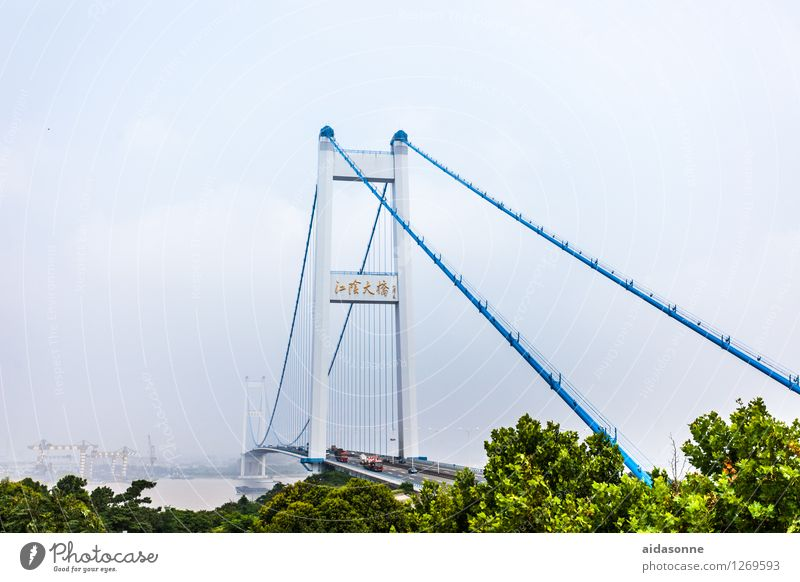 Suspension bridge in Jiangyin Town Bridge Movement Jiangsu Car bridge jangtze River Colour photo Exterior shot Deserted Day Long shot