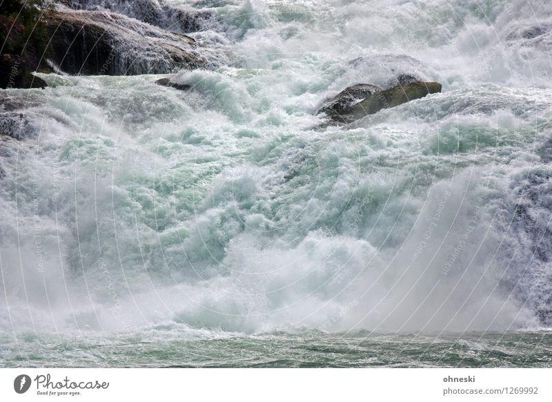 1100 - Energy Elements Water River Rhine Waterfall Rhein falls Rock Switzerland Power Environment Force of nature Colour photo Exterior shot Deserted
