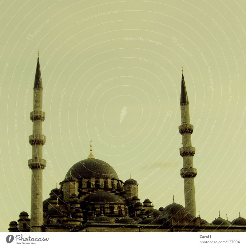 minaret Mosque Prayer Allah Deities Belief Vacation & Travel Art Istanbul Turkey Religion and faith Carpet Minaret Domed roof House of worship Moslem Tradition