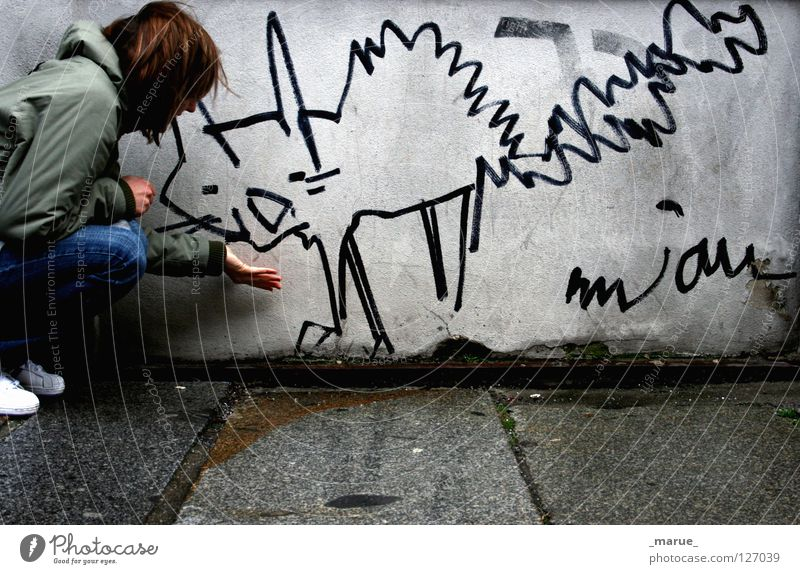 Woman Hand Girl White House (Residential Structure) Black Nutrition Animal Street Cold Wall (building) Gray Cat Building Rain Graffiti