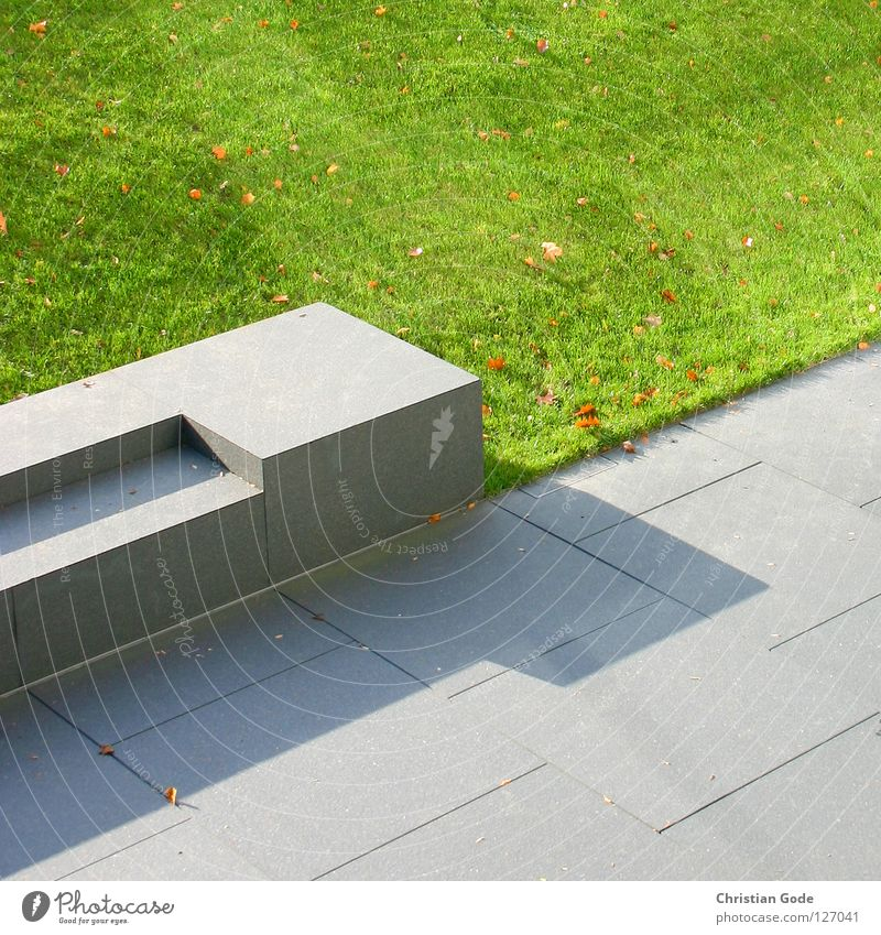 Sun Green Summer Leaf Meadow Gray Stone Park Brown Art Concrete Lawn Bench To go for a walk Floor covering