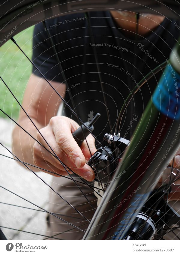 Bicycle assembly 2 Leisure and hobbies Cycling tour Tool New Colour photo Exterior shot Day Shallow depth of field