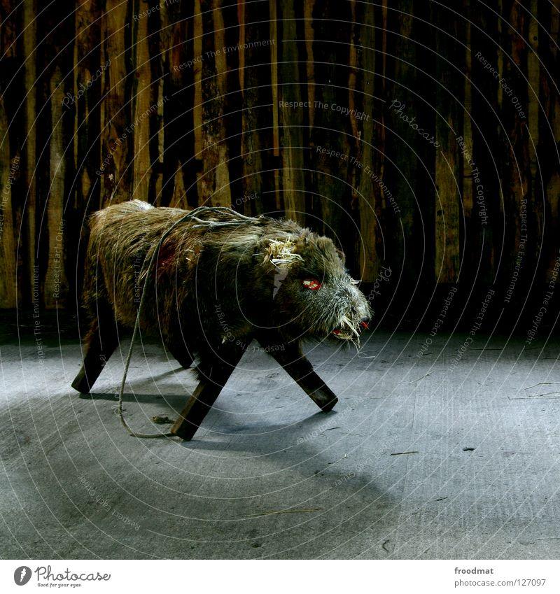 ramp sow Wild boar Animal Pelt Creepy Sow Animalistic Boar Furniture Seating Long exposure Dark Even-toed ungulate Male boar Massive Bushy Mammal Stuffed