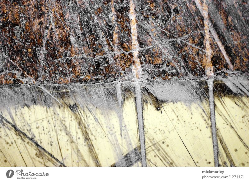 Yellow Gray Line Brown Small Search Floor covering Tracks Crack & Rip & Tear Attempt Painter Fine Paintbrush Canyon Text Painted