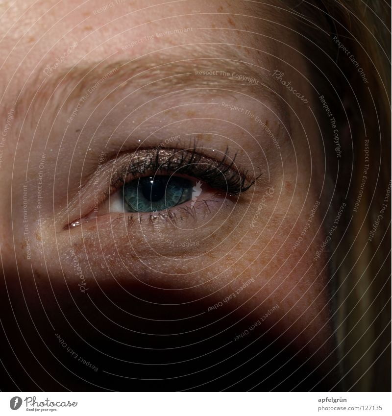 freckle Happiness Pupil Black Contact lense Make-up Eyelash Eyebrow Freckles Woman Friendliness Curiosity Blonde Mysterious Joy Macro (Extreme close-up)
