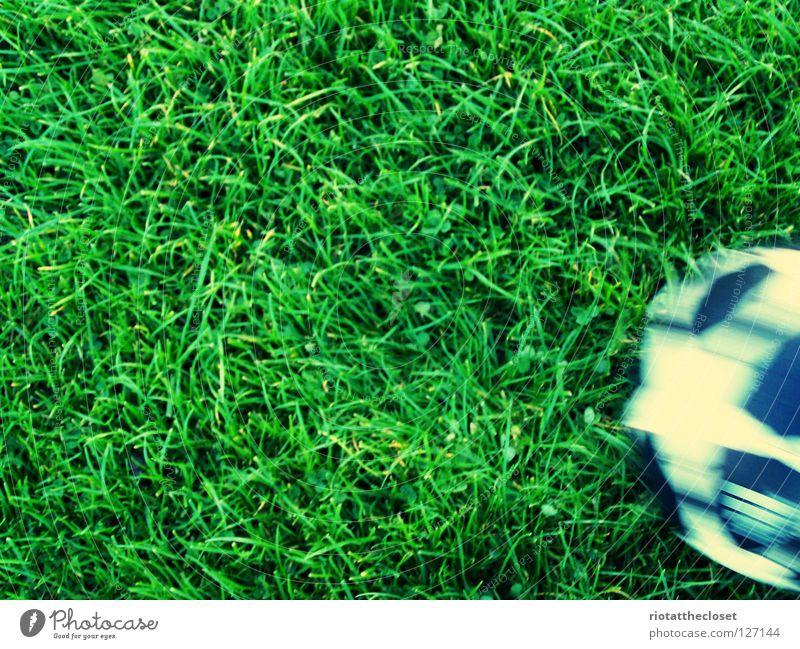 Summer Joy Meadow Playing Grass Soccer Ball sports