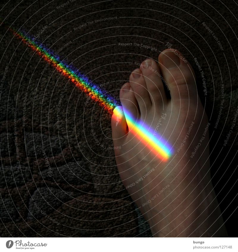 llustra me Toes Carpet Rainbow Pattern Multicoloured Prismatic colors Prismatic colour White Light Red Yellow Vessel Man Hair Beautiful